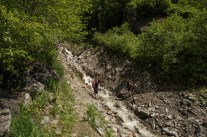 Man on the bank of a mountain stream in the Austrian Alps