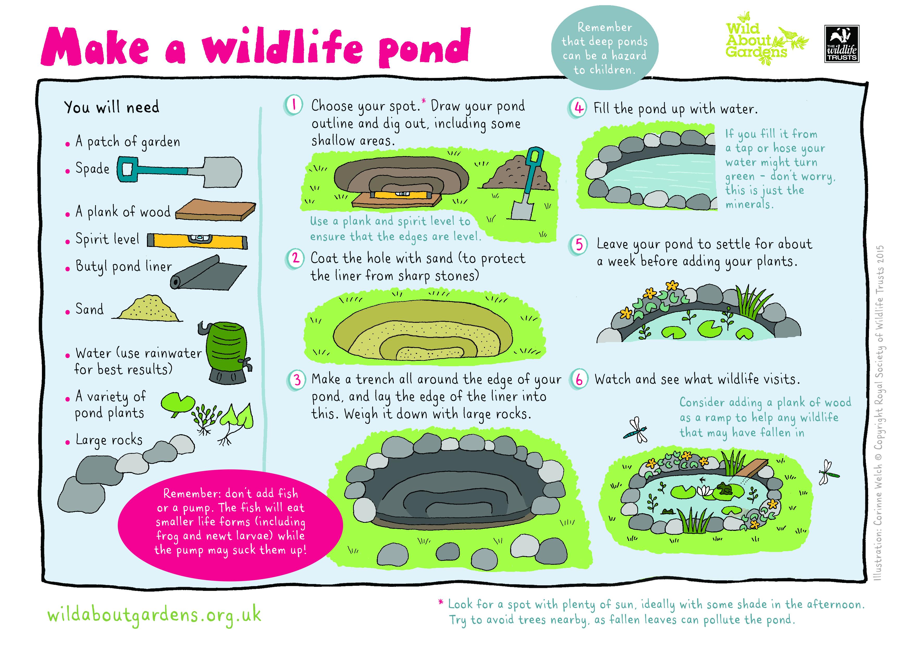 How To Help Wildlife
