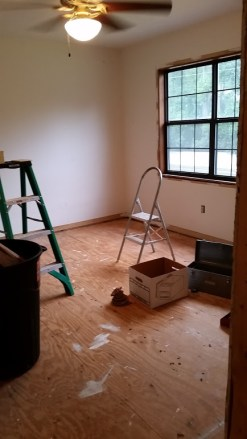 Removing carpet and trim
