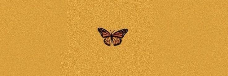 Twitter Header Light Brown Brown Aesthetic Background 5
