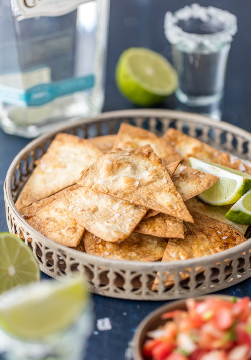 national tortilla day | Tumblr