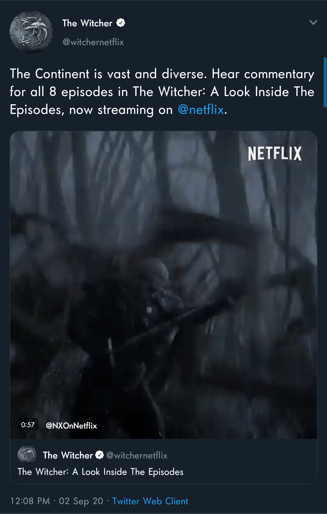 The Witcher Netflix Streaming : witcher, netflix, streaming, Witcher, Stuff