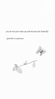 Butterfly Quotes Tumblr : butterfly, quotes, tumblr, Tumblr