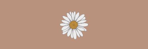 Twitter Header Light Brown Brown Aesthetic Background