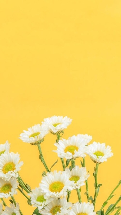 Yellow Home Screen : yellow, screen, Yellow, Aesthetic, Here's, Home/lock, Screens, Lovin'...