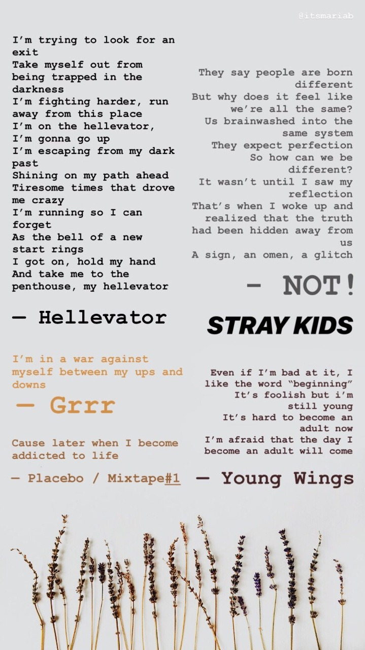 Stray Kids Lyrics English : stray, lyrics, english, Stray, Kids', Lyrics, Compilation, This...