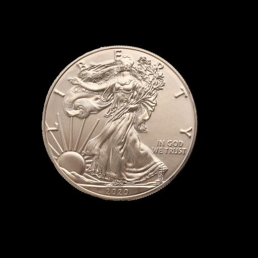 USA : One dollar walking liberty 2020