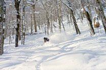 Vermont Backcountry: Photo Dalton Harben
