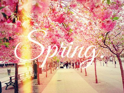 Images Of Fall Season Wallpaper 5 Tips To Spring Into Spring Claire S Fashion Amp Beauty Blog