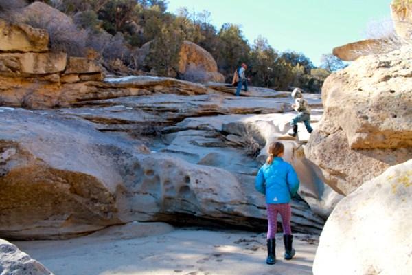 simon canyon9