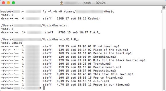 Capture d'écran de la commande ls dans un shell