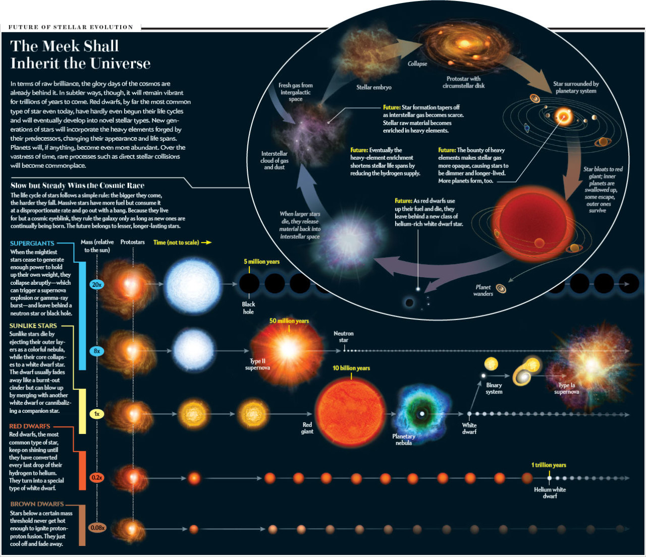 Science Visualized The Future Of Stellar Evolution The