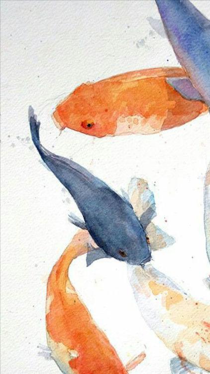 Anime Koi Fish Girl Wallpaper Koi Fish Tumblr