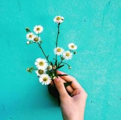 flower aesthetic tumblr