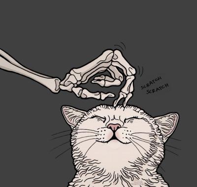 cat drawing tumblr