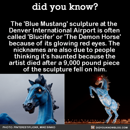 The 'Blue Mustang' sculpture at the Denver International Airport is often called 'Blucifer' or 'The Demon Horse' because of its glowing red eyes. The nicknames are also due to people thinking it's haunted because the artist died after a 9,000 pound...