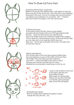 How To Draw Furry Heads : furry, heads, Furry, Drawing, Tutorial