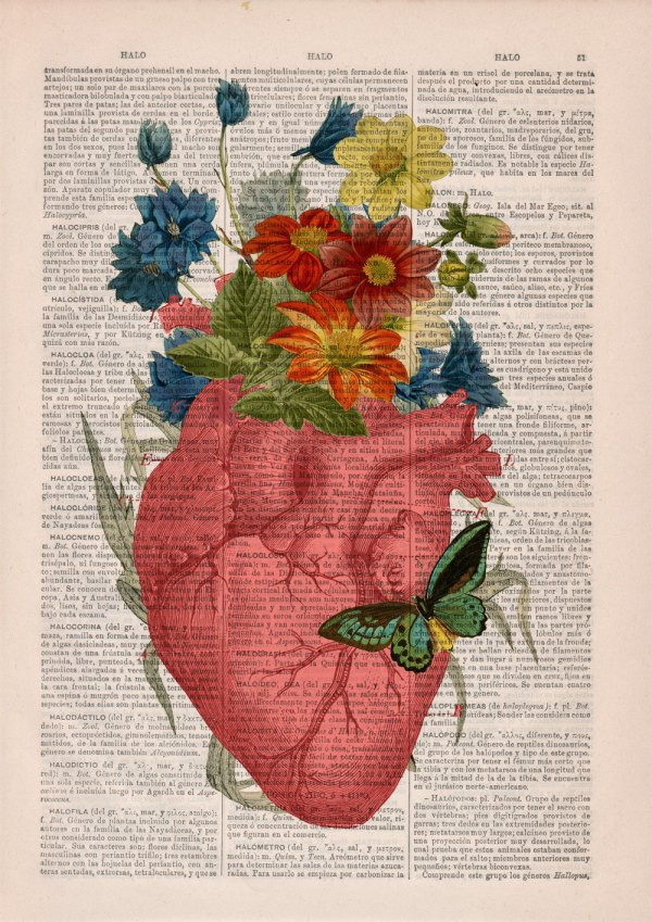 Culture Lifestyle Anatomical Collages Vintage