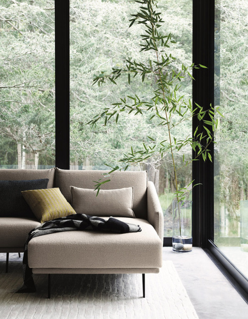 tumblr_phoalo5sf21qfx0suo1_500 stua:  The STUA sofa can include this wide chaiselongue. Time to... Contemporary