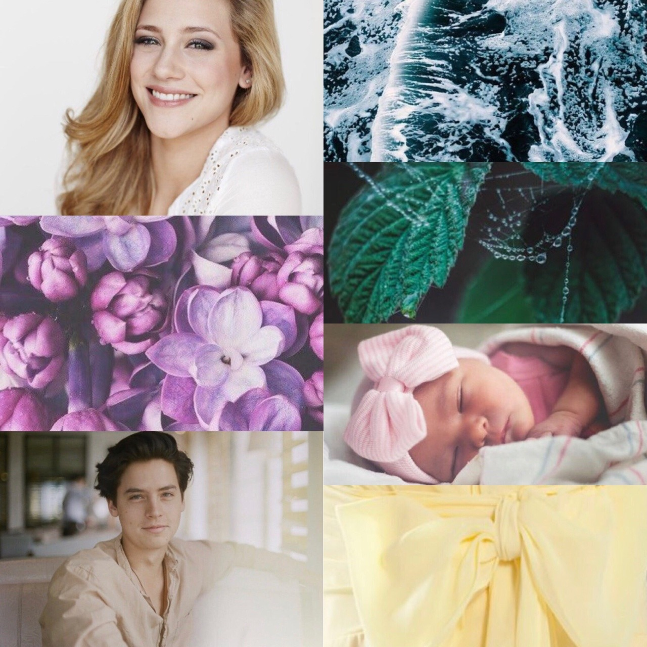 Baby Rose Fanfiction