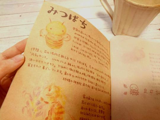 http://pears11.tumblr.com