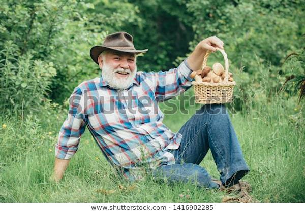 Old bearded man, smiling, leaning on his side with a basket of mushrooms on his knee.