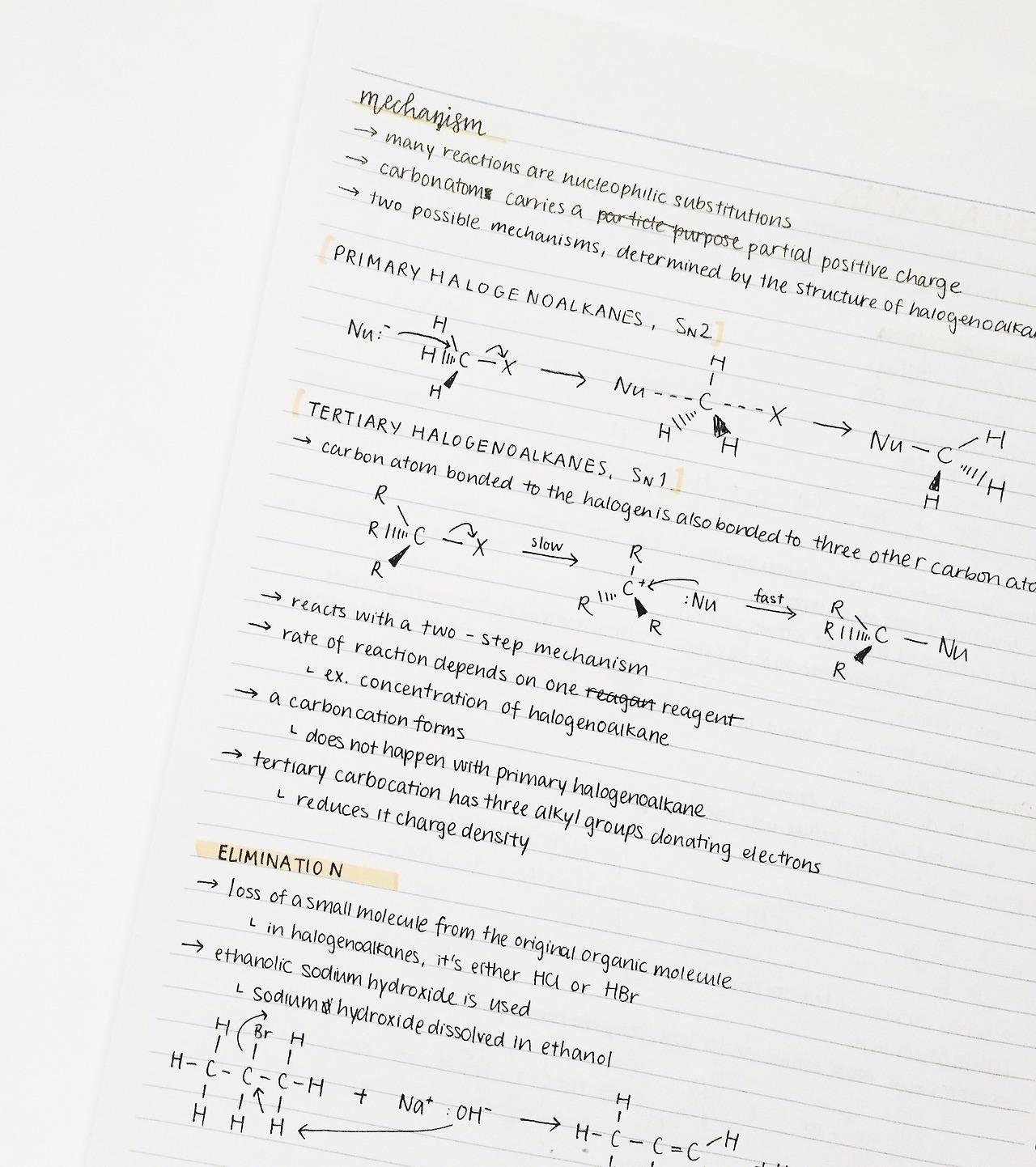 studyberr