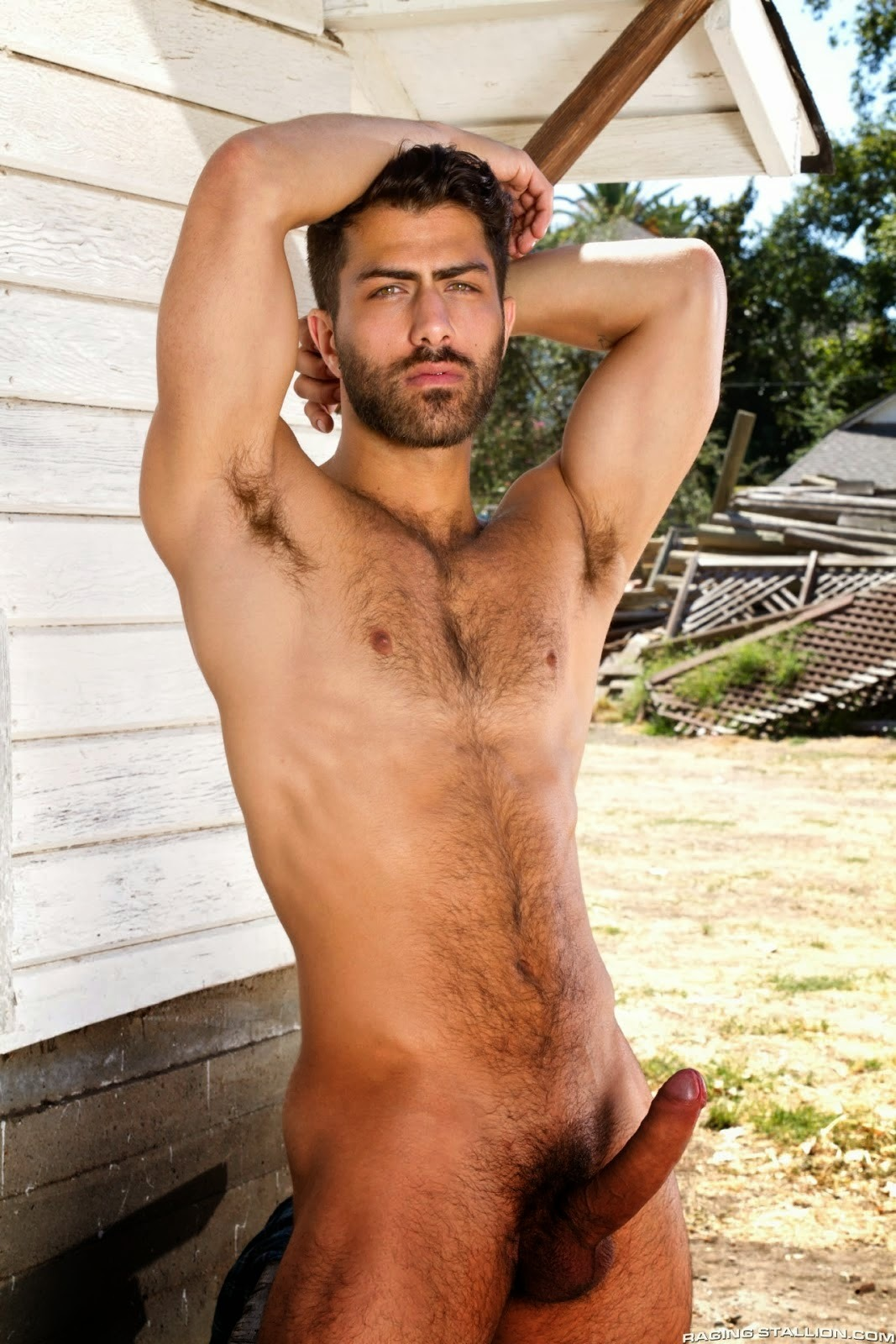 handsome hairy naked men