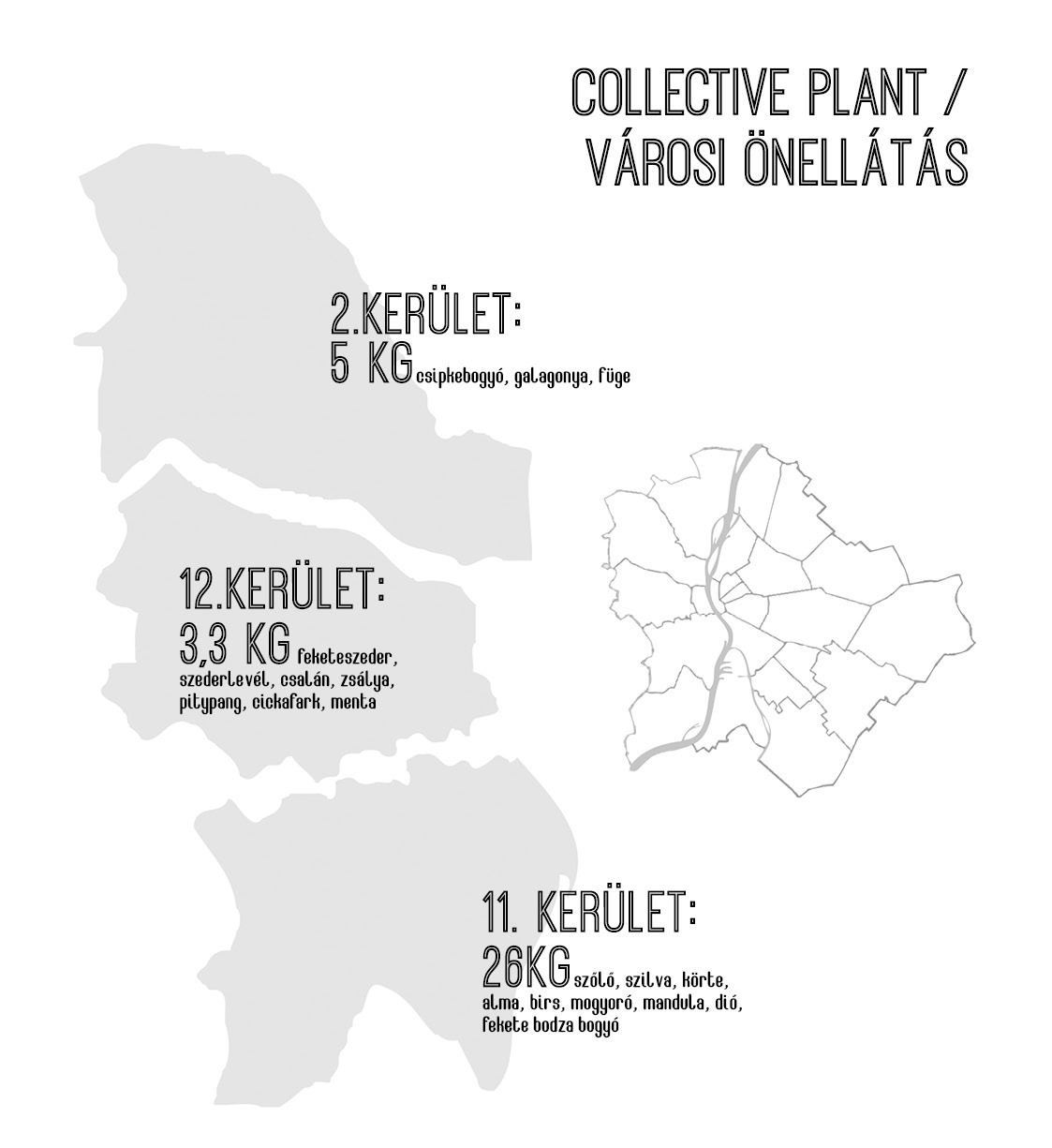 Collective Plant