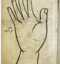medieval palm reading this awesome miniature is found in a medieval hebrew manuscript and depicts the [ 981 x 1280 Pixel ]