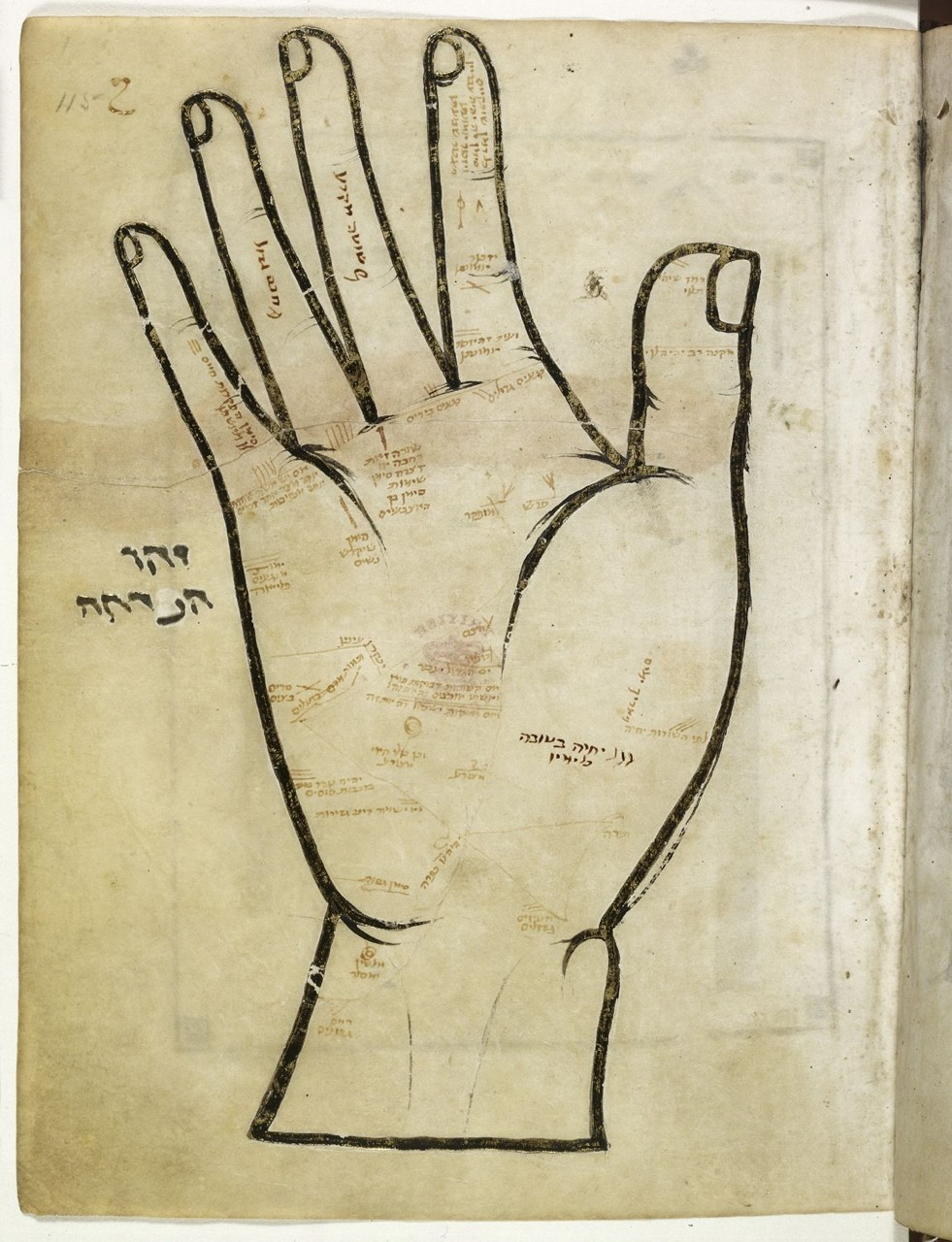 medium resolution of medieval palm reading this awesome miniature is found in a medieval hebrew manuscript and depicts the