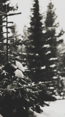 Aesthetic Photography Tumblr Christmas Laptop Wallpaper Sigila Mencurah Pedih
