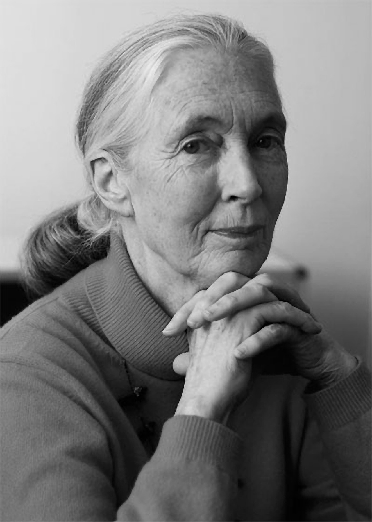 Just For Books April 3 Happy Birthday Jane Goodall
