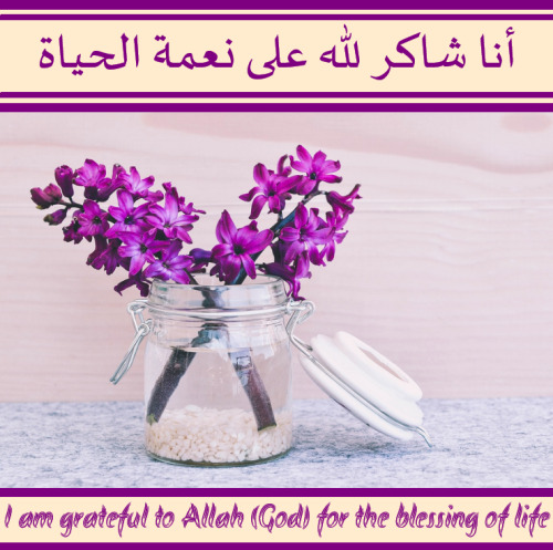 8 Words Related to Gratitude in Arabic  The Word Collector 2
