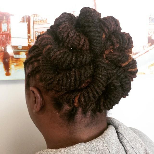 Natural Hair Health Wellness Barrelled Windmill Bun On