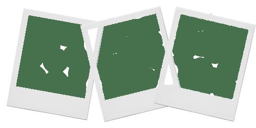 polaroid template tumblr