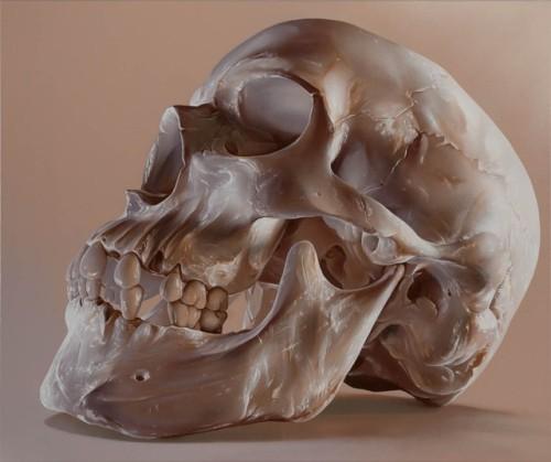 tumblr_pgrnct3Fb91qz6f9yo4_500 Skin & Bones, Sam Bates aka Smug Random