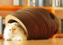 Designer Cat Furniture