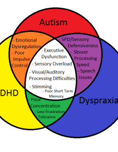 Cw badly made pie charts venn diagrams yes  know said the wrong thing also actually dyspraxic  rh actuallydyspraxic tumblr
