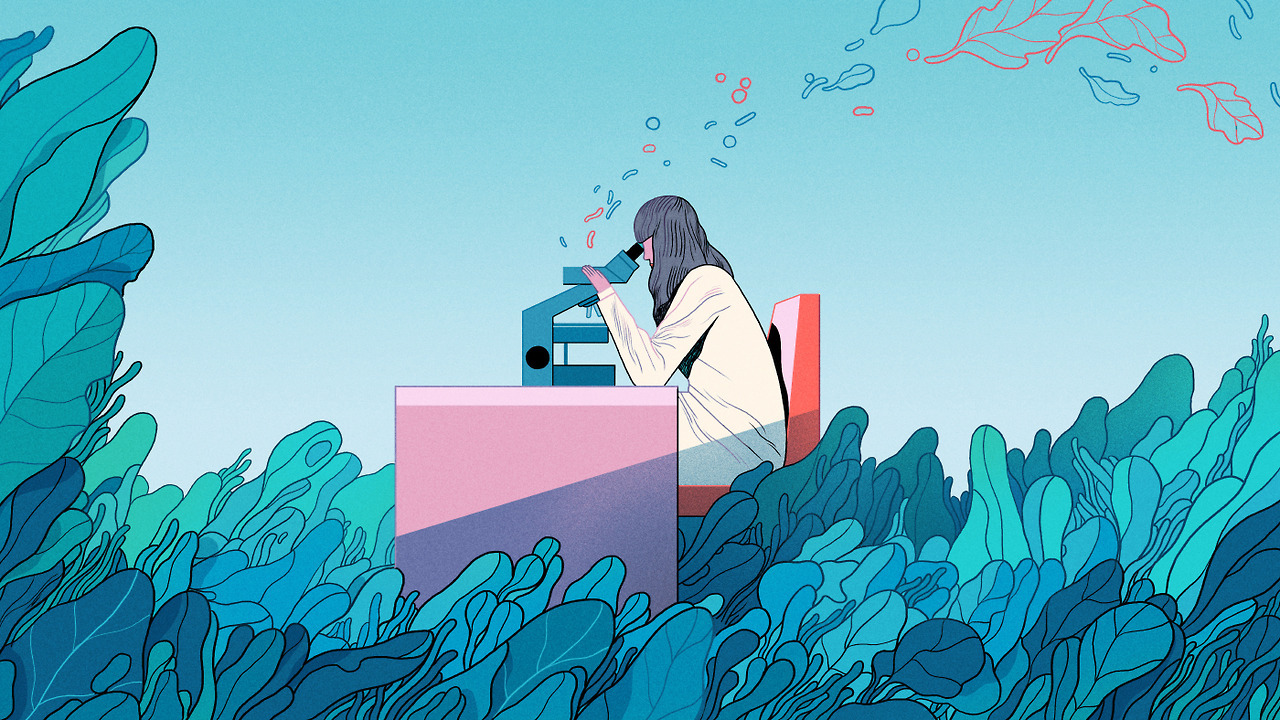 illustration for science magazine