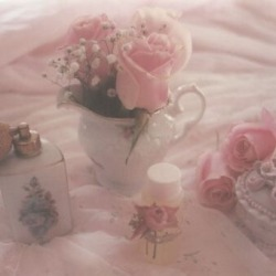 Soft Pink Pictures Of Flowers Aesthetic