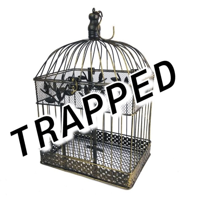 caged on Tumblr