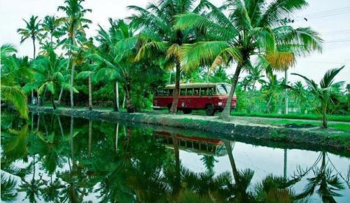 Image result for KERALA NATURAL BEAUTY