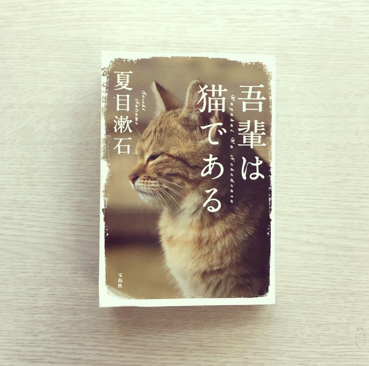吾輩は貓である on Tumblr