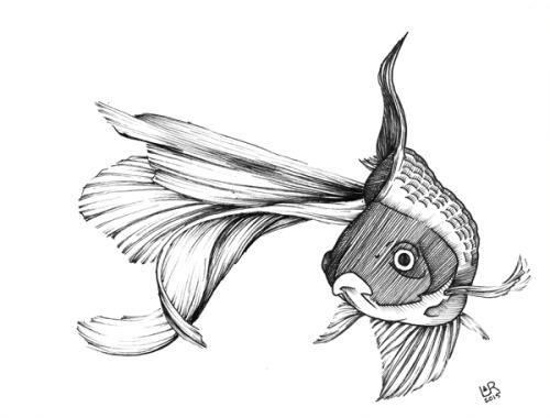 Girl Goldfish Wallpaper Layer And Repeat