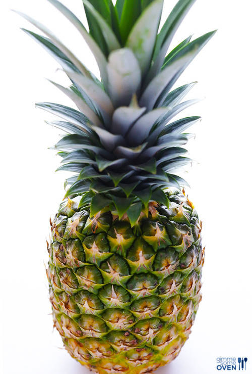 Black Girly Wallpapers For Iphone Pineapples On Tumblr