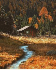Ph Stevint #cabin