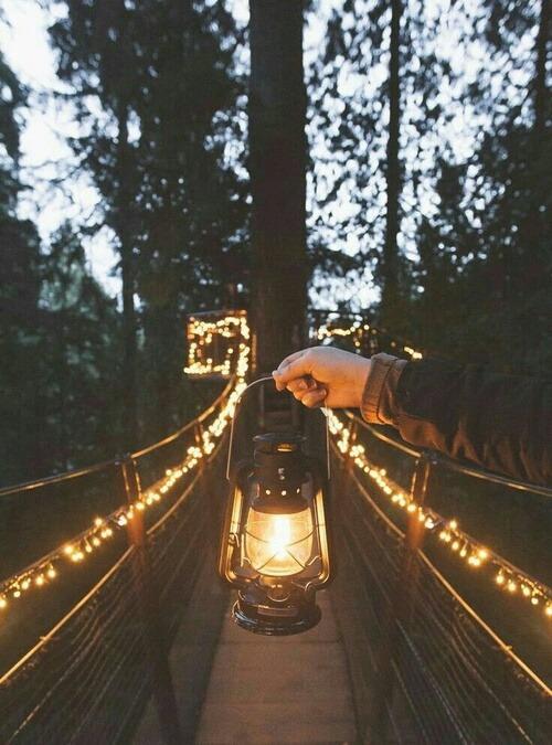 fairy lights on Tumblr