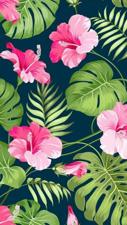flamingo wallpaper  Tumblr