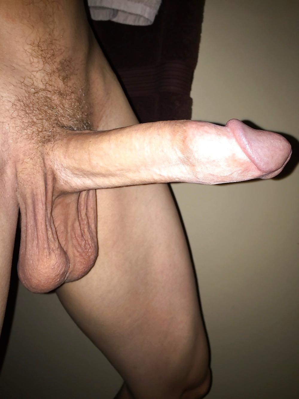 gay cocks tumblr